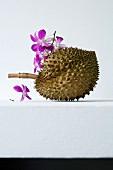 Eine Durian und violette Orchideenblüten