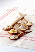 Various types of flour on wooden spoons