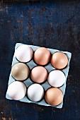 Frische Eier im Behälter