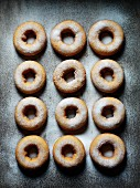 Sugared doughnuts (seen from above)