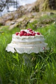 Meringue cake with raspberries and white chocolate in a meadow