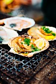 Grilled scallops with lemon and spring onions on a rustic cooking grid, Japan