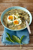 Sorrel soup with mashed potatoes and egg