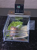 Food being kept warm in a sous-vide