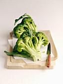 Frischer Brokkoli auf Schneidebrett