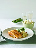 Pan-fried salmon with cauliflower mash