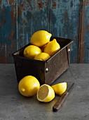 Zitronen in Vintage-Kastenform