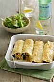 Cannelloni mit Schinken, Kürbis und Salbei