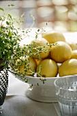 Zitronen in der Schüssel