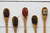 Various types of peppercorns on bamboo spoons: black pepper, long pepper, pink pepper, chocolate pepper and white pepper