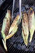 Maiskolben mit Blättern grillen