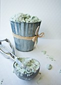 Mint chocolate chip ice cream in a tin with an ice cream scoop