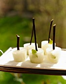 Elderberry ice lollies on natural sticks for a summer festival