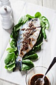Seabream with a spicy marinade on a bed of spinach