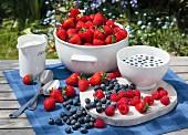 Frische Beeren und Milch auf Gartentisch