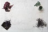 Verschiedene getrocknete Algen, Algenpulver und Algentabletten