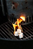 Burning fire lighters on a barbecue