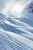 Mountain snow and ski tracks