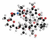 Everolimus immunosuppressant molecule