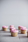 Cupcakes topped with pink frosting