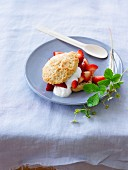 Shortcake with strawberries and cream