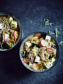 Buckwheat noodle soup with tofu, radishes, black sesame seeds, algae and cress (Japan)