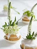weiße Cupcakes mit Blumendeko