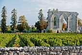 Les Grand murailles, Saint- Emilion, Bordeaux, France