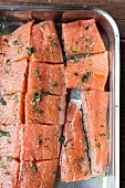 Raw salmon pieces in a roasting tin