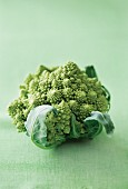 Romanesco broccoli on a green surface