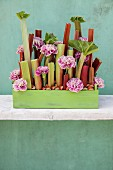Ikebana arrangement of rhubarb stalks and carnations