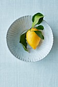 A lemon with leaves on a ceramic plate