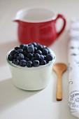 Joghurt mit frischen Heidelbeeren in Glasgefäss