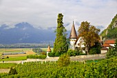 Chateau Maison Blanche in Yvorne, Chablais wine region, Waadt, Switzerland