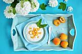 Joghurt mit Aprikosen und Minze