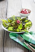 Courgette fritters with salad and beetroot dip