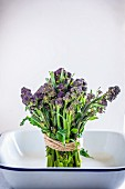 A bundle of purple sprouting broccoli in an enamel bowl