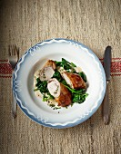 Rabbit roulade with spinach