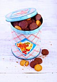Chocolate biscuits and vanilla biscuits and a biscuit tin