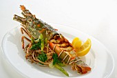 Grilled reef lobster with pasta and asparagus