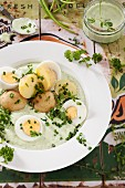 New potatoes with green sauce and hard-boiled eggs