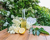 Elderflowers, elderflower syrup and lemons on a wooden table in a garden