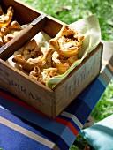 Posh picnic - Portabella mushroom, leek, goats cheese and thyme tarts