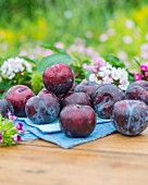 Plums with flowers and leaves on a garden table