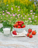 Strawberries and cream on a garden table