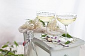 Homemade elderflower champagne in champagne glasses