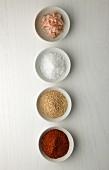 Gesalzene Shrimps, Meersalz, Sesam und Chilipulver in Schälchen