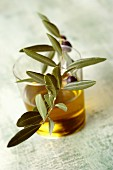 A glass of olive oil with an olive sprig