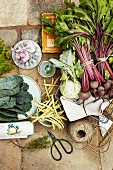 Stillleben mit frisch geerntetem Gartengemüse (Aufsicht)