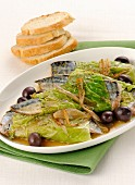 Mackerel wrapped in savoy cabbage with olives